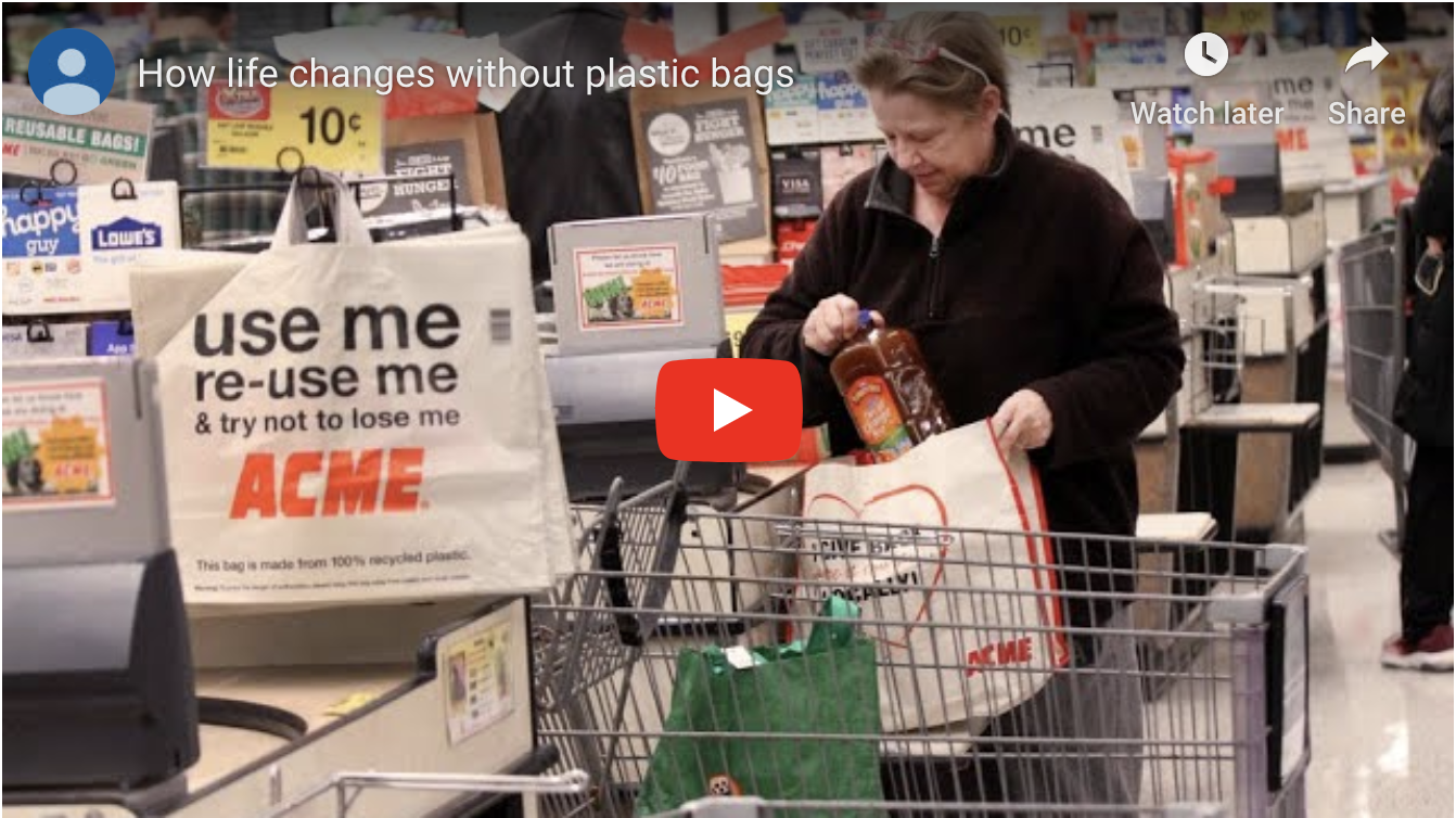 How life changes without plastic bags