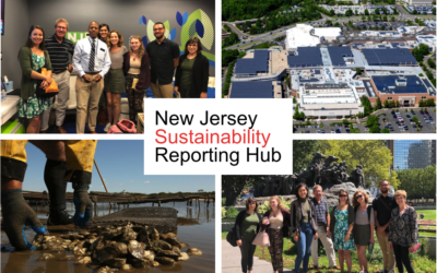Announcement: Applications open for NJSR Hub Sustainability Reporting Fellows