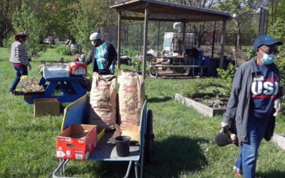 Trenton's Urban Gardens Foster Food Sovereignty and Civic Engagement