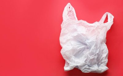 Cape May County Towns Lead the Way in Bag Ban as NJ Moves Toward Strictest Limits in Nation